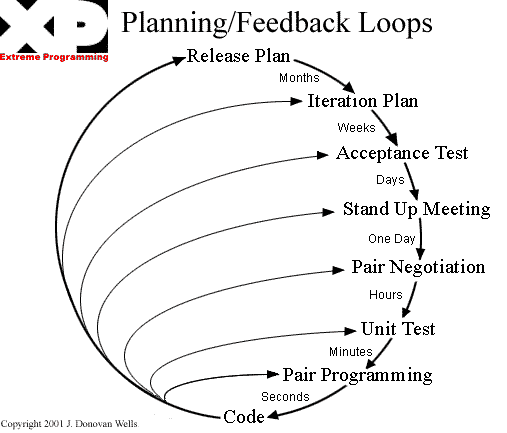 XP feedback loops